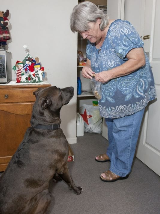"Ann Werner in her Brick apartment gets a visit from therapy dog ""Bo""."