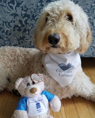 Caregiver Canine